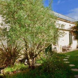 Eysines centre Bourg, maison en pierre de 265 m2 sur parcelle de 302 m2, 5 chambres, garage, proche Tram, accès, bus